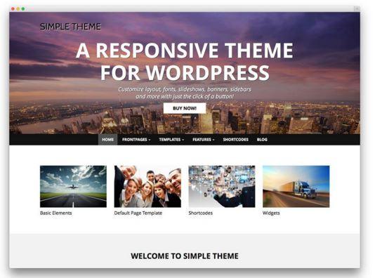 wordpress premium website